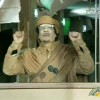 Gaddafi Rumored To Have Been Shot, Oil Prices Fall