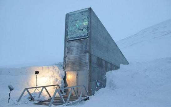Peru Potato Seeds Stored In Arctic Vault For Safekeeping