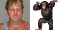 Lab tech found partying with monkeys with pants pulled down