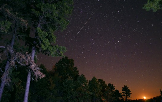 Going out to watch the Perseid meteor shower? Listen to Starline on your iPhone while you're out!