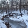Winter has taken over Patapsco Valley State Park