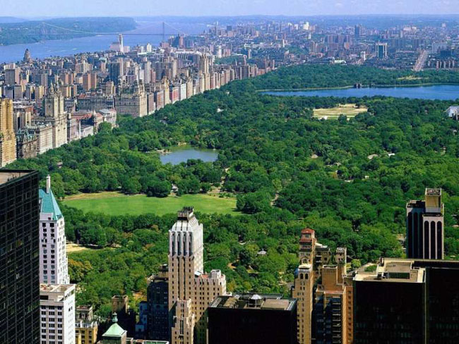 Wealthy Americans are now choosing to sell their devaluing homes and using that money to rent luxury apartments in New York City like this one overlooking Central Park.