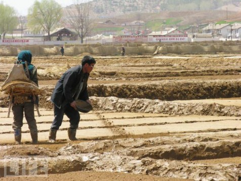 """Poo Shops"" have sprung up in North Korea as fertilizer becomes a scarce commodity."