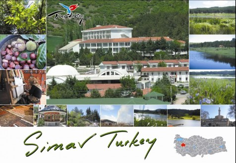 A postcard featuring some of the sights of the town of Simav were the earthquake struck at its epicenter.  The town is about 80 kilometers south-west of Kutahya.