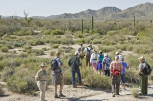 Park rangers escort visitors through the park at Organ Pipe Cactus National Monument. Photo by Ron Medvescek