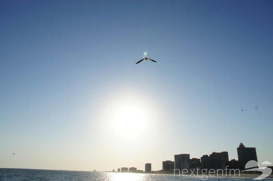 Flying with a seagull into the sunset at Atlantic City, NJ.
