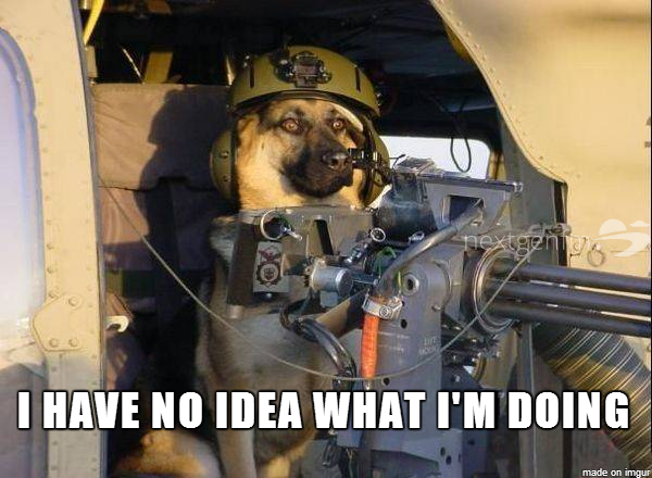I have no idea what I'm doing dog helicopter
