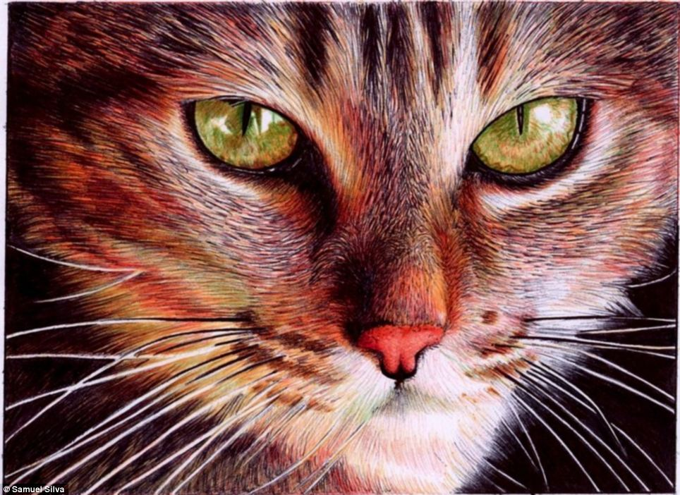 The original drawing of this cat was only the size of two credit cards. ©