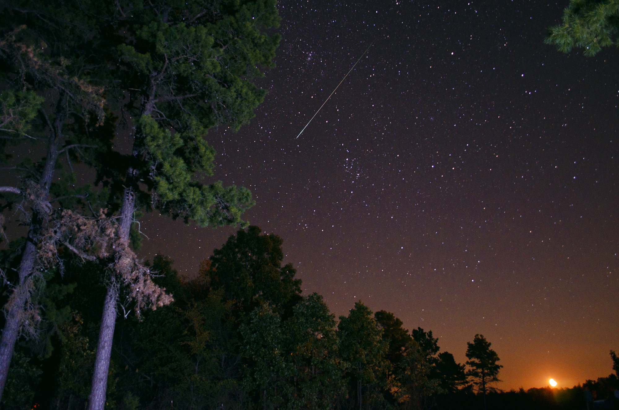 Photographer Jeff Rose took a great snapshot of a Perseid meteor the other night.  You can too!