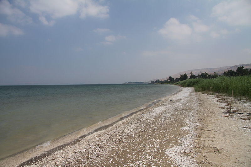 Beach on the Sea of Galilee