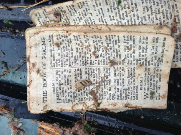 Twitter user Danny Moody photographed a Bible that landed in the back of his pickup up truck in the aftermath of the tornado. Photo by Danny Moody