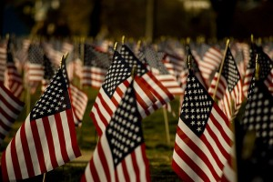 Flags displayed at the National Mall in Washington DC