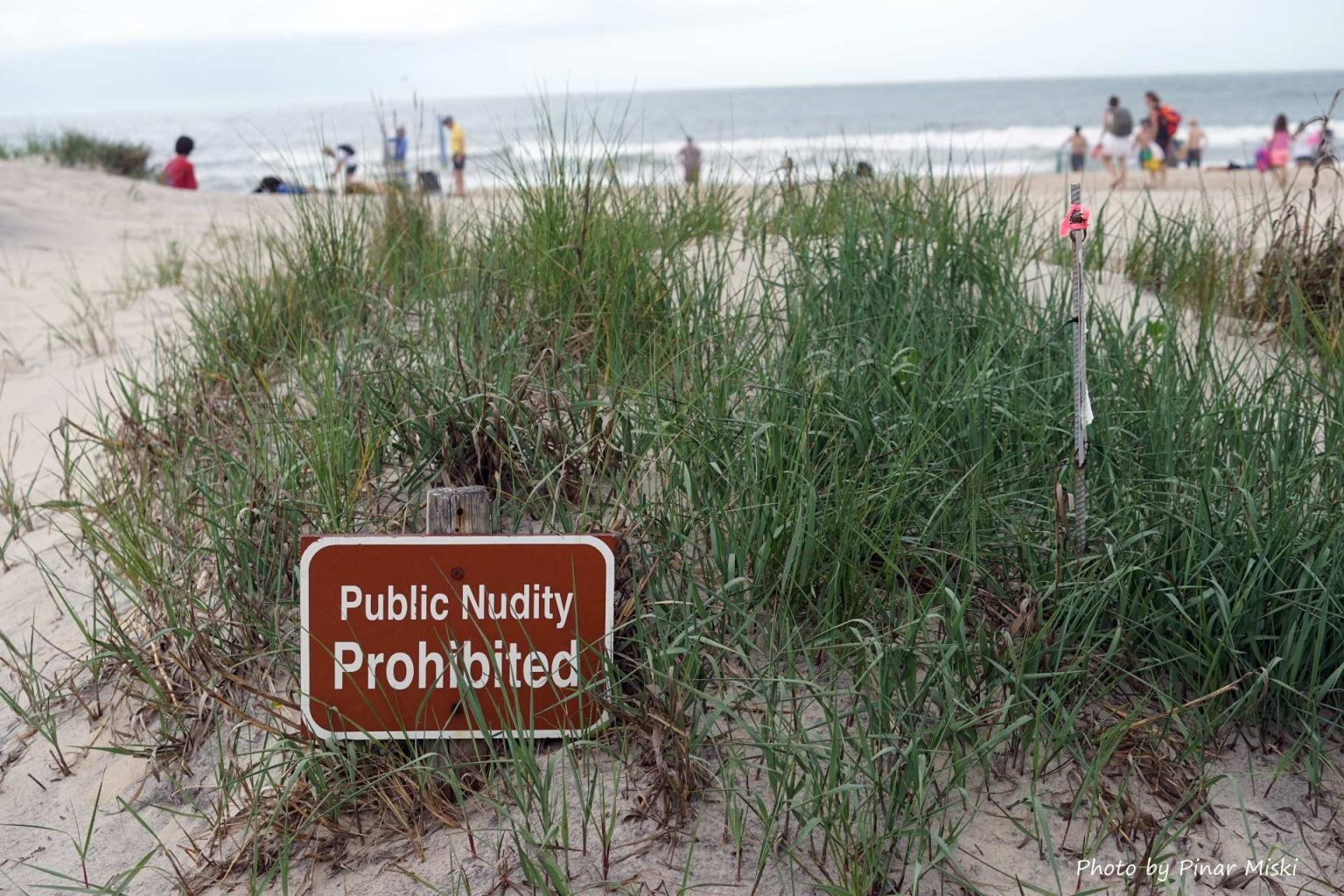 Sorry but you'll have to keep your swimsuit on.  This is Virginia after all.  No Public Nudity.